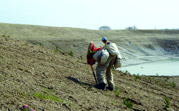 Ecological Restoration Professionals